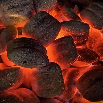 Bricchetti carbone pressato 100% vegetale  Sud Americano